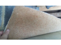Large beige capet - 18' x 12.8' ft (5.49 x 3.86 m)