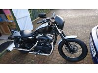 2007 Harley Davidson XL1200 Nightster MOT May17, 28300, Every receipt, service from new,NOW REDUCED