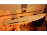 Mini Mal 7ft 6 BIC Perfect Beginner Board