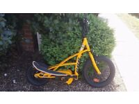 Stepper bike junior