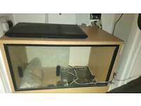 Vivarium for sale!