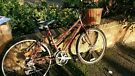 Ladies red mountain bike with basket and gel seat cushion