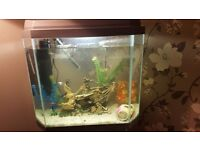 Fish tank for sale heater pump ship and gravel