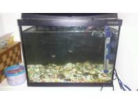 Tropical fish tank (30 liters)