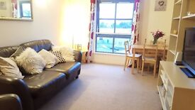 Lovely two double bedroom flatshare start of Musselburgh (One room available)