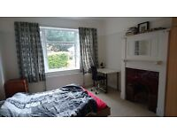 A large double room for rent in a lovely area of Wimbledon
