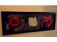 Lovely red roses picture