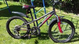 Halfords Apollo Spider Kids Mountain Bike -Age 7-9