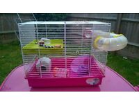 Pink cage for hamster