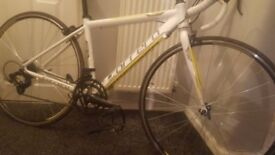 White carrera road bike white and yellow