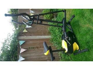 Exercise bike AND cross trainer! Everlast model EV-445B. Super condition!