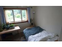 Double room in two bedroom flat (available NOW, Festival Let)