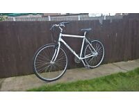 Marin 24 speed hybrid bike lightweight cycle 19inch silver large silver top brand