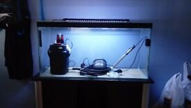 100litre fish tank and stand