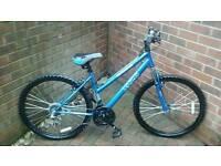 "Apollo ladies xc26 17"" mountain bike new and unused"