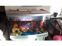 Fish tank £40