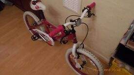 Kid's Bike (Girl's Bike)