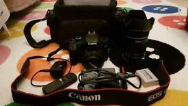 Canon 550d with 18-135mm f/3.5-5.6 and 50mm f/1.8 lenses