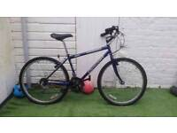 "BIKE CONCEPT CONQUEST 15 SPEED/FRAME 17""/WHEELS 26"" UNISEX MOUNTAIN BIKE"