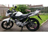 Yamaha YBR 125 - Reduced