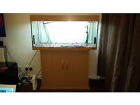 JUWEL RIO 180 FISH TANK WITH STAND,FILTER,HEATERS,AIR PUMP,FOOD AND ACCESSORIES