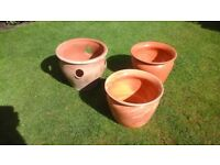 Plant pots ,will sell separately.