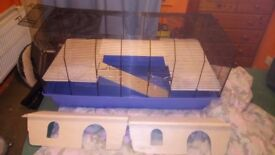 Syrian Hamster cage