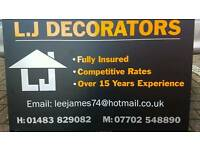 professional painter and decorator