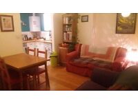 Double room available JAN in lovely 2-bed Montpelier flat
