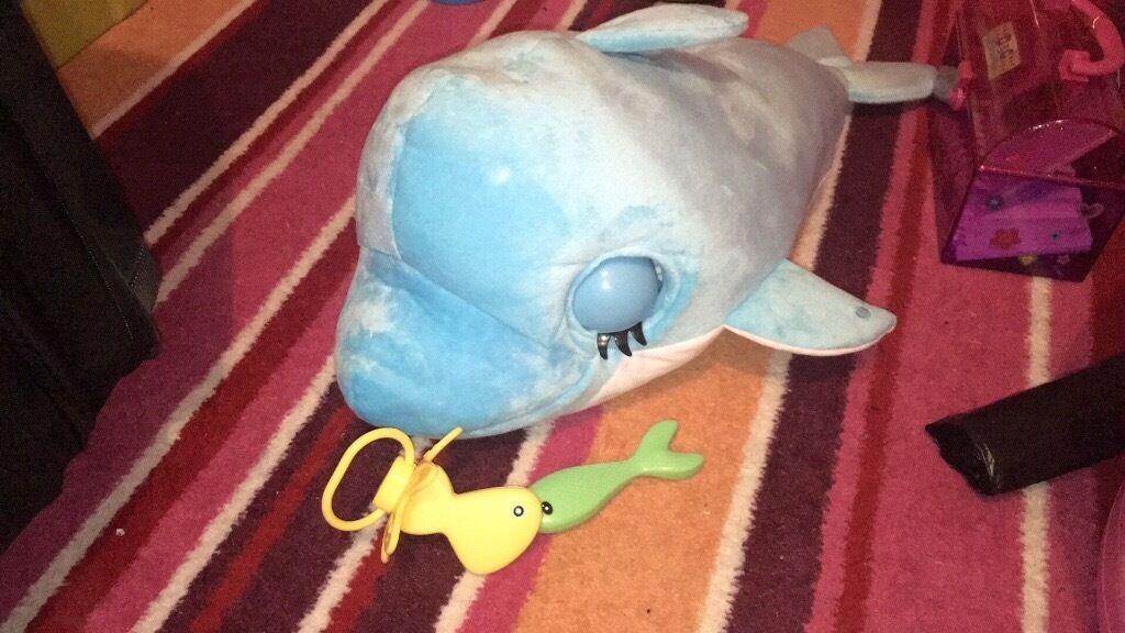 Blublu dolphin