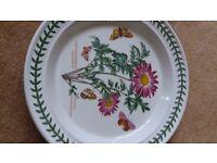 Portmeirion dinner plate Chrysanthemum