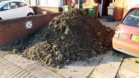 Free soil on offer