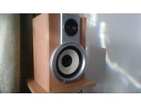 Good Sounding Hifi/Monitor Speakers