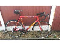 cannondale cadd 5 team saeco road bike