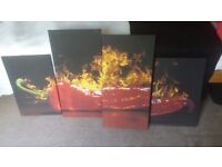 Red chilli canvas in excellent condition