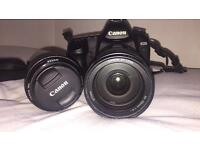 Canon EOS 5D Mark II - body, two lenses, two batteries