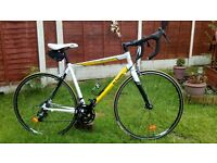 Adult. Carbon/Alu, Btwin sport 3. Road/race bike. Serviced ready to ride. Like new.