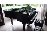 "Superb Steinway Boston baby grand piano. Model GP156 (156 cm) 5'1"""
