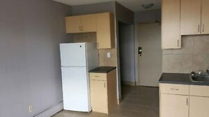 One Bedroom  unit in Downtown- 780-862-7464