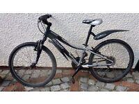 Specialised Hotrock mountain bike 24 inch wheels 12 inch frame