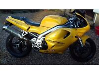 Triumph daytona t595 great condition 12 month mot