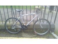 Raleigh Silverblade Bike