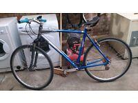 GIANT city bike