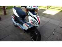 Pulse force 50 cc 13 plate