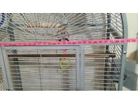Parrot Bird Parakeet very large cage, Birdcage open top