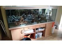 "Rena 6'7"" fish tank complete set up just add water and fish"