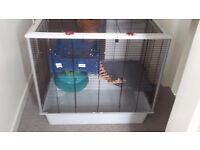 Large Rat/Mouse/Gerbil Cage