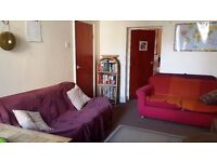 £420 small double in Newington Green flat share