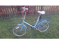 Vintage Commuter Bike