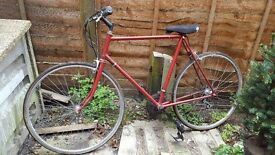 Mens Bicycle - Red. The chain needs looking at.